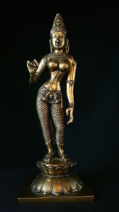 Parvati shiva sacred