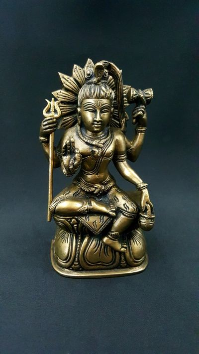 Shiva the first Yogi